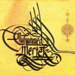 Profilbild von Muhammet Mertek